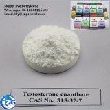 Injecteerbare Steroïden 99% het Vloeibare Testosteron Enanthate Te van de Injectie van de Olie