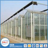 Usine Tempered facilement installée avancée de serre chaude de construction de structure métallique