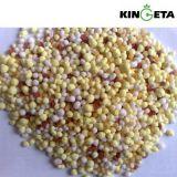 Fertilizante NPK 20 do milho da mistura NPK de Kingeta 20 15