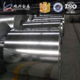Lo zinco di alta qualità ha ricoperto la bobina d'acciaio galvanizzata
