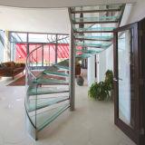 China interior excepto escalera moderna de cristal espiral usada espacio/la escalera del acero inoxidable