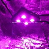la serra 300W/lo spettro completo LED PANNOCCHIA medica delle piante coltiva gli indicatori luminosi per i commerci all'ingrosso