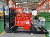 Globales Markt-Cer Standard-Generator des Wechselstrom-Dreiphasenhölzerner Gas-300W für Verkauf