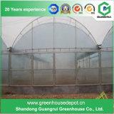 販売の高品質の野菜または花のプラスチックフィルムの温室