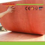 Preço comercial impermeável da madeira compensada de barato 18mm