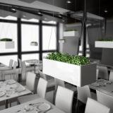 Potenciômetro de flor de suspensão quadrado da planta do aço de Uispair 100% para a decoração do hotel do jardim do escritório