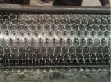 Hexaognalの塀の網の金網