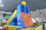 2015 Sale quente Blue & Yellow Water Slide para Sale