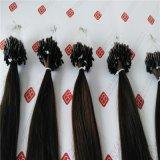ブラジルの人間の毛髪のマイクロリングの前に担保付きの毛