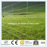 Rete fissa animale della rete metallica, rete fissa del campo della giuntura di cerniera, bestiame Fance