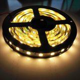 照明のよい価格SMD5054 60LEDs/M LEDのストリップ