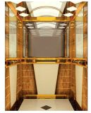 مسافر مصعد مصعد لأنّ الناس فوق وإلى أسفل [كجإكس-ز04]