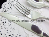 Insieme degli articoli per la tavola della coltelleria del ristorante dell'hotel della forcella della lama del cucchiaio dell'acciaio inossidabile