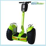 電気一人乗り二輪馬車のゴルフスクーターのバランスをとっているブラシレス4000W 72Vの永続的な自己