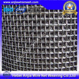 Alta qualità Galvanized Square Wire Mesh con (CE e SGS)