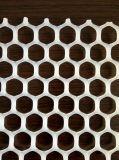 Сетка самого лучшего цены HDPE пластичная плоская