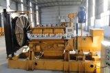 La ISO 9001 provee de gas/los conjuntos de generador del motor del biogás del motor eléctrico