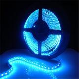 Tira flexible LED 12V 5050SMD azul lámpara de coches