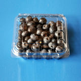 Caja de empaquetado del arándano de la categoría alimenticia de la fruta plástica del cestito