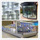 曲げられた二重ガラスの絶縁されたガラスのガラス製造業者
