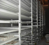 Sala de almacenamiento en frío de diseño / cuarto frío para frutas y hortalizas Alimentos