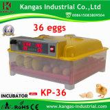 Incubateur complètement automatique d'incubateur d'oeufs de vente chaude mini/oeufs de poulet pour 36 oeufs