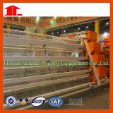 Cage de poulet de couche d'oeufs avec le système d'approvisionnement en eau automatique (JFA90)