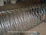 보호를 위한 안전 공장 면도칼 가시철사