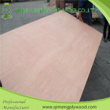 Linyi 10 Years Gold Supplier für 1220X2440X1.6-18mm Commercial Plywood