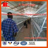自動か半自動Galvanizatedのニワトリ飼育場装置の鶏のケージ(JFLS0621)