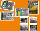 Vorfabriziertstahlkonstruktion-Geflügel bringen, Huhn-Haus, landwirtschaftliches Gebäude unter