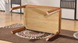 Твердый деревянный обедая журнальный стол стола (M-X2157)