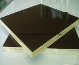La madera contrachapada/la película marinas hizo frente a la madera contrachapada Shuttering de la madera contrachapada/de la madera contrachapada de la construcción con el precio bajo