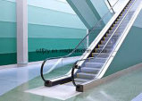 Fujizy preiswerter Rolltreppe-Preis