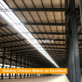 الصين صاحب مصنع يصنع [بوولتري فرم ستروكتثر]