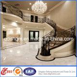 Rotaie poco costose della scala del fornitore della Cina