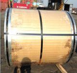 Acero laminado en caliente de acero de la bobina (304 / NO. 1)