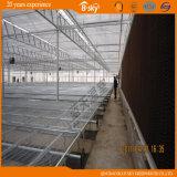 Da folha agricultural do policarbonato do telhado de Venlo casa verde