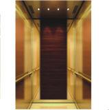 Elevatore del passeggero con la piccola stanza della macchina (Q05)