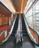 China-bester Fluggast-elektrische Rolltreppe