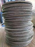 Disco tessuto olandese del filtro a sipario dell'espulsore dell'acciaio inossidabile