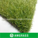 الصين [هيغقوليتي] اصطناعيّة يرتّب عشب مموّن ([أمف412-35ل])