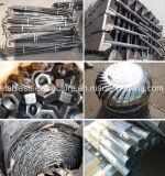 Progetto prefabbricato chiaro del gruppo di lavoro della struttura d'acciaio con grande caduta eccessiva