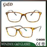 Het nieuwe Optische Frame van het Oogglas Eyewear van Ultem van de Stijl Plastic met de Tempel van het Aluminium E021