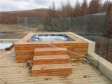 Europese Massage Outdoor Jaccuzi SPA