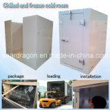 Cella frigorifera raffreddata e congelata