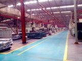 I ricambi auto dello Shaanxi digiunano adattare 12js200t
