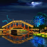 Water Dance Stage Effect LED PAR Light voor Building