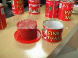 Inserimento di pomodoro inscatolato dalle linee di produzione del fornitore della Cina