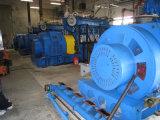 5X1MW Containerized Diesel Elektrische centrale van Hfo/(de reeksen van de Generator)